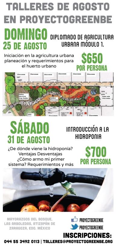 Talleres de huerto urbano, hidroponía en agosto 2013 proyectogreenbe.org