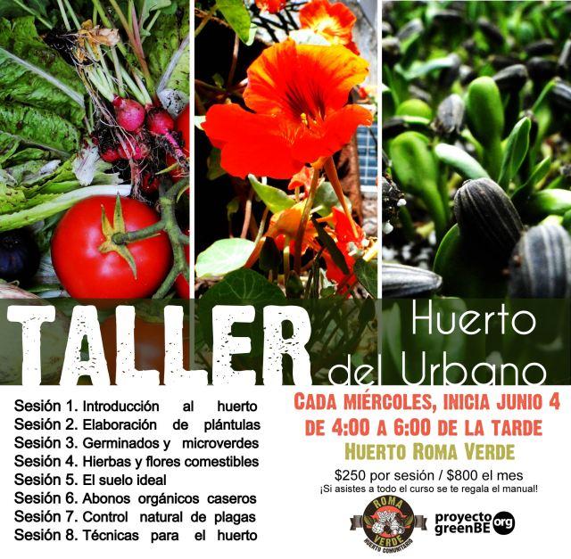 Taller de huertos urbanos en la Ciudad de México, junio 2014